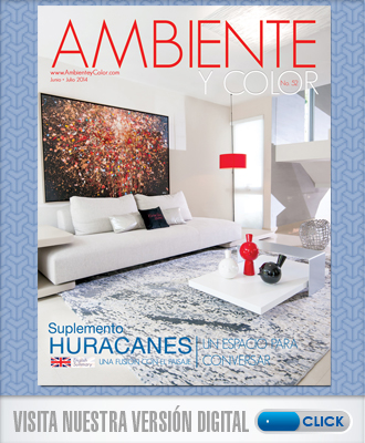 Portada Ambiente y Color junio 2014