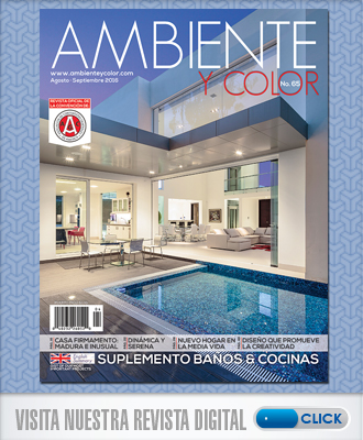 portada-revista-ambiente-y-color